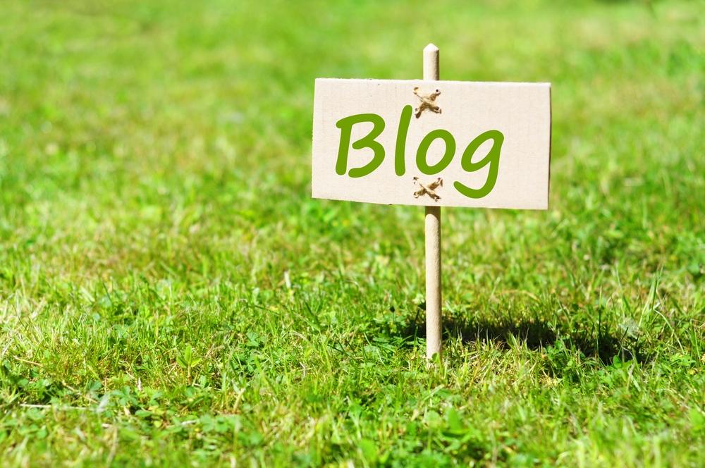 【頑張らない】ブログ制作は自力でやらない方が良いです【最初だけ】