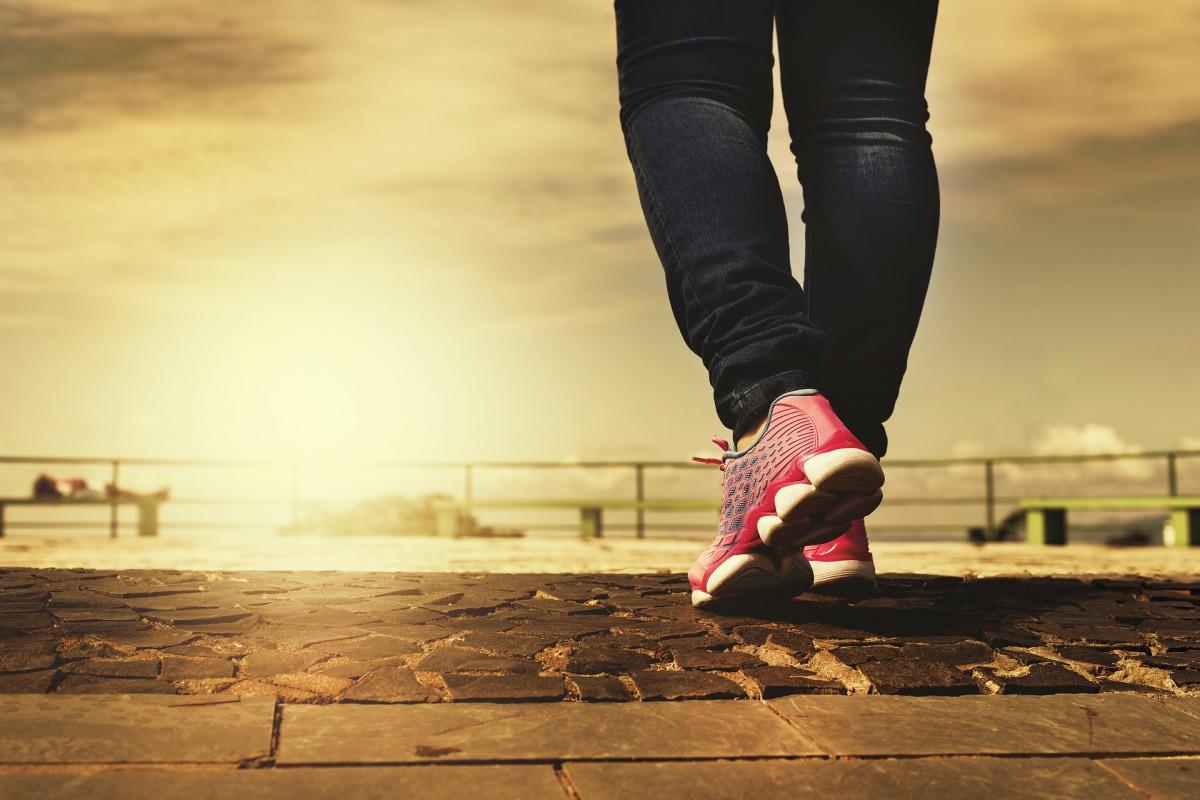 【1日】8,000歩を目標にして、ウォーキングをすべき理由【歩数】